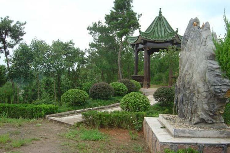 黄山植物大观园
