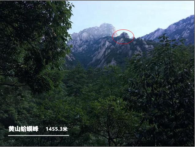 黄山蛤蟆峰